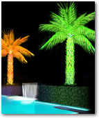 Add to the beauty of any Pool with these Lighted Palm Trees