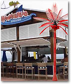 Lighted Coconut palms for Marina Restaurants
